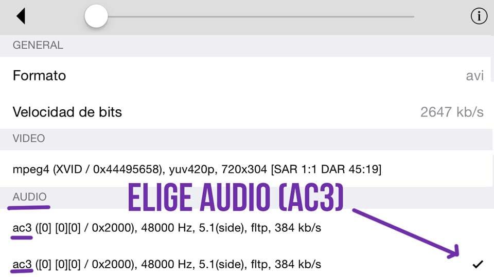 Pista de Audio AC3 en un AVI en iPad - Leef iBridge