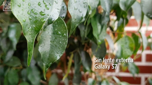 Lente Samsung Galaxy S7